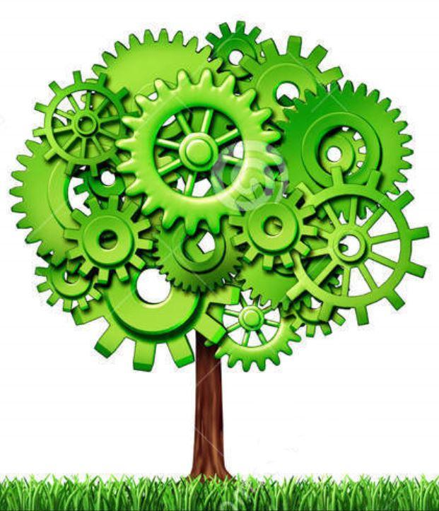 startup tree 4